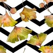 Zelená žlutá ginkgo biloba list rostlin botanické listy. Sada akvarel ilustrace. Akvarel, samostatný výkresu módní aquarelle. Vzor bezešvé pozadí. Fabric tapety tisku textura