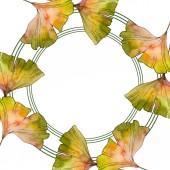 Zelená žlutá Ginko biloba list. Listy rostlin Botanická zahrada květinové listy. Sada akvarel pozadí obrázku. Akvarel, samostatný výkresu módní aquarelle. Frame hranice ozdoba náměstí