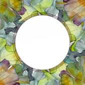 Ginkgo biloba leaf. Leaf plant botanical garden floral foliage. Watercolor background illustration set. Watercolour drawing fashion aquarelle isolated. Frame border ornament square.
