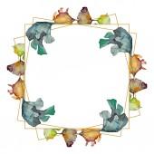 Fotografia Foglia del ginkgo biloba. Fogliame floreale foglia pianta giardino botanico. Insieme di illustrazione dellacquerello della priorità bassa. Aquarelle di moda disegno acquerello isolato. Quadrato di ornamento del bordo cornice