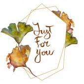 Fotografie Ginkgo biloba leaf. Leaf plant botanical garden floral foliage. Watercolor background illustration set. Watercolour drawing fashion aquarelle isolated. Frame border ornament square.