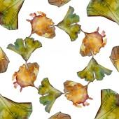 Ginkgo biloba Blatt. Blattpflanze botanischer Garten florales Laub. Aquarell Hintergrundillustration Set. Aquarellzeichnung Modeaquarell isoliert. Rahmen Rand Ornament Quadrat.