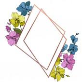 Fotografie Vektor modré, růžové a žluté orchideje izolované na bílém. Frame hranice ornament se kopie prostoru
