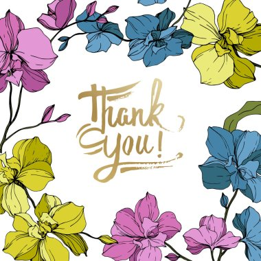 Vector blue, pink and yellow orchids isolated on white. Frame border ornament with thank you lettering. clip art vector