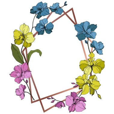 Vector blue, pink and yellow orchids isolated on white. Frame border ornament with copy space. clip art vector