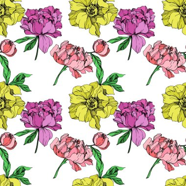 Vector pink, purple and yellow peonies illustration on white background. Engraved ink art. Seamless background pattern. Fabric wallpaper print texture. clip art vector
