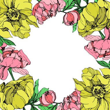 Vector isolated pink and yellow peonies with green leaves on white background. Engraved ink art. Frame border ornament with copy space. clip art vector