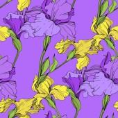 Fényképek Vektor elszigetelt lila és sárga íriszek. Varratmentes háttérben minta. Anyagot a nyomtatási textúrát