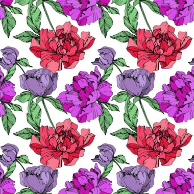 Vector purple and living coral isolated peonies illustration on white background. Engraved ink art. Seamless background pattern. Fabric wallpaper print texture. clip art vector