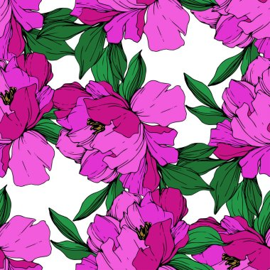 Vector purple isolated peonies illustration on white background. Engraved ink art. Seamless background pattern. Fabric wallpaper print texture. clip art vector