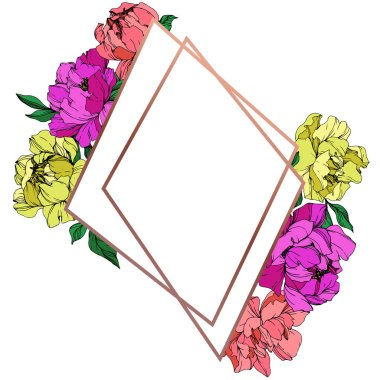 Vector isolated living coral, purple and yellow peonies with green leaves on white background. Engraved ink art. Frame border ornament with copy space. clip art vector