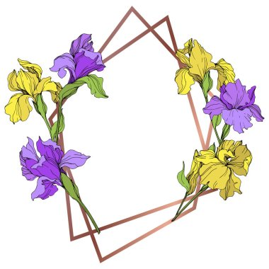 Vector yellow and purple isolated irises illustration. Frame border ornament with copy space. clip art vector