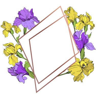 Vector yellow and purple isolated irises illustration. Frame border ornament with copy space.