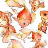 Akvarell vízi színes aranyhal elszigetelt fehér illusztráció beállítása. Varratmentes háttérben minta. Anyagot a nyomtatási textúrát