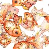 Fotografie Aquarell aquatische bunte Goldfische isoliert auf weißem Abbildung eingestellt. Nahtlose Hintergrundmuster. Stoff Tapete drucken