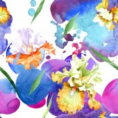 Oranžové bílého irisu květinové botanické květin. Divoký jarní listové izolované. Sada akvarel ilustrace. Akvarel výkresu módní aquarelle. Vzor bezešvé pozadí. Fabric tapety tisku textura.