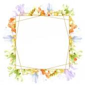 Oranžové bílého irisu květinové botanické květin. Divoký jarní listové wildflower izolován. Sada akvarel pozadí obrázku. Akvarel, samostatný výkresu módní aquarelle. Frame hranice ozdoba náměstí.