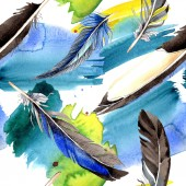 Watercolor blue and black bird feather from wing. Aquarelle feather for background, texture, wrapper pattern. Watercolour drawing fashion seamless background pattern. Fabric wallpaper print texture.