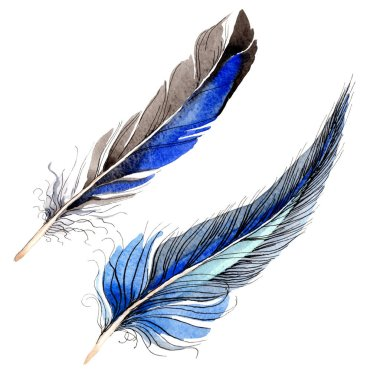 Watercolor blue and black bird feather from wing isolated. Aquarelle feather for background. Watercolour drawing fashion. Isolated feathers illustration element. stock vector