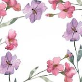 Fotografia Rosa e viola floreale botanica fiore del lino. Millefiori di foglia di primavera selvaggio isolato. Insieme di illustrazione dellacquerello della priorità bassa. Aquarelle di moda disegno acquerello. Quadrato di ornamento del bordo cornice