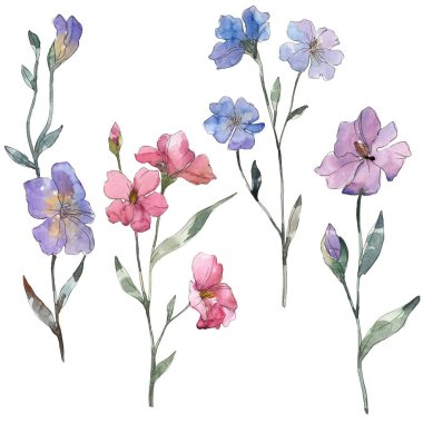 Pink and purple flax floral botanical flower. Wild spring leaf wildflower isolated. Watercolor background illustration set. Watercolour drawing fashion aquarelle. Isolated flax illustration element. stock vector