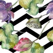 Růžové a fialové lotus botanické květin. Divoký jarní listové izolované. Sada akvarel ilustrace. Akvarel výkresu módní aquarelle. Vzor bezešvé pozadí. Fabric tapety tisku textura.