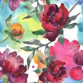 Sárga és bordó pünkösdi rózsa. Akvarell illusztráció készlet. Varratmentes háttérben minta. Anyagot a nyomtatási textúrát.