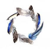 Ptačí peří z křídla izolované na bílém. Sada akvarel pozadí obrázku. Frame hranice ornament.