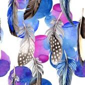 Fotografie Ptačí peří z křídla. Sada akvarel pozadí obrázku. Vzor bezešvé pozadí. Fabric tapety tisku textura