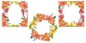 Červené a žluté tropické květinové botanické květin. Divoký jarní listové wildflower izolován. Sada akvarel pozadí obrázku. Akvarel výkresu módní aquarelle. Frame hranice ozdoba náměstí.