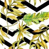 Tropické květinové botanické květin. Exotické rostliny listů izolován. Sada akvarel ilustrace. Akvarel výkresu módní aquarelle. Vzor bezešvé pozadí. Fabric tapety tisku textura
