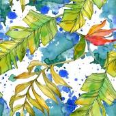 Fotografia Fiori botanici floreali tropicali. Foglia di pianta esotica isolata. Insieme dellillustrazione dellacquerello. Aquarelle di moda disegno acquerello. Reticolo senza giunte della priorità bassa. Stampa tessuto per tappezzeria