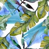 Fotografie Zelené listy rostlin Botanická. Exotické havajské tropické léto. Sada akvarel ilustrace. Akvarel, samostatný výkresu módní aquarelle. Vzor bezešvé pozadí. Fabric tapety tisku textura