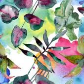 grüne Blattpflanze botanisch. exotischer tropischer hawaiianischer Sommer. Aquarell-Illustrationsset vorhanden. Aquarellzeichnung Modeaquarell isoliert. nahtlose Hintergrundmuster. Stoff Tapete drucken Textur.