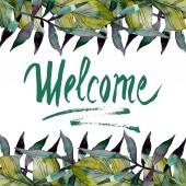 Fogliame di verde foglia pianta giardino botanico. Esotica estate tropicale hawaiano. Insieme di illustrazione dellacquerello della priorità bassa. Aquarelle di moda disegno acquerello isolato. Quadrato di ornamento del bordo cornice