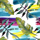 Fotografia Botanico di pianta verde foglia. Esotica estate tropicale hawaiano. Insieme dellillustrazione dellacquerello. Aquarelle di moda disegno acquerello isolato. Reticolo senza giunte della priorità bassa. Stampa tessuto per tappezzeria