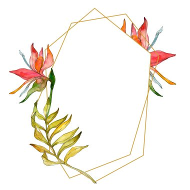 Tropical floral botanical flowers. Exotic plant leaf isolated. Watercolor background illustration set. Watercolour drawing fashion aquarelle isolated. Frame border ornament square.