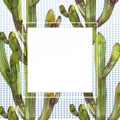 Sada zelená kaktusy akvarel pozadí obrázku. Frame hranice ornament se kopie prostoru.