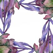 Zamatos floral botanikus virág. Vad tavaszi levél vadvirág elszigetelt. Akvarell háttér illusztráció készlet. Akvarell rajz divat aquarelle elszigetelt. Test határ Dísz tér.