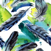 Fotografie Blue and black bird feathers from wing. Watercolor background illustration set. Seamless background pattern.
