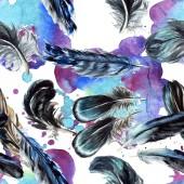 Fotografie Modré a černé ptačího peří z křídla. Sada akvarel pozadí obrázku. Vzor bezešvé pozadí