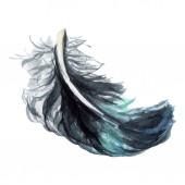 Blueand fekete madár toll szárny elszigetelt. Akvarell háttér illusztráció. Elszigetelt toll ábra elem.