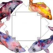 Pettyes vízi víz alatti színes hal meg. Vörös-tenger és egzotikus halak belül. Akvarell háttér illusztráció készlet. Akvarell rajz divat aquarelle elszigetelt. Test határ Dísz tér.