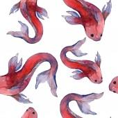Vízi hal meg. Vörös-tenger és egzotikus halak belül: Aranyhal. Akvarell illusztráció készlet. Akvarell rajz divat aquarelle. Varratmentes háttérben minta. Anyagot a nyomtatási textúrát.