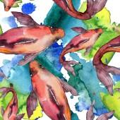 Fotografie Aquatische Fisch Set. Rotes Meer und exotische Fische im Inneren: Goldfisch. Aquarell Bild gesetzt. Aquarell Zeichnung Mode Aquarell. Nahtlose Hintergrundmuster. Stoff Tapete drucken