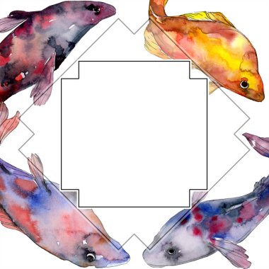 Spotted aquatic underwater colorful fish set. Red sea and exotic fishes inside. Watercolor background illustration set. Watercolour drawing fashion aquarelle isolated. Frame border ornament square. stock vector