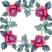Fotografia Fiore rosso e rosa rosa floreale botanica. Millefiori di foglia di primavera selvaggio isolato. Insieme di illustrazione dellacquerello della priorità bassa. Aquarelle di moda disegno acquerello. Quadrato di ornamento del bordo cornice