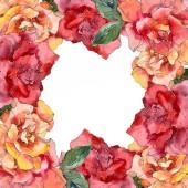 Piros és narancssárga Rózsa virág botanikai virág. Vad tavaszi levél vadvirág elszigetelt. Akvarell háttér illusztráció készlet. Akvarell rajz divat aquarelle elszigetelt. Test határ Dísz tér.