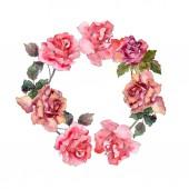Rózsaszín rózsa botanikai virág virág. Vad tavaszi levél vadvirág elszigetelt. Akvarell háttér illusztráció készlet. Akvarell rajz divat aquarelle elszigetelt. Test határ Dísz tér.