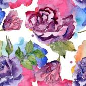 Fialové a červené růže botanické květin. Divoký jarní listové izolované. Sada akvarel ilustrace. Akvarel výkresu módní aquarelle. Vzor bezešvé pozadí. Fabric tapety tisku textura